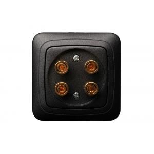 Розетка аудио 2-местная, без рамки, ALFA черный